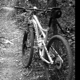 Help in choosing a bike... - last post by wcn1970