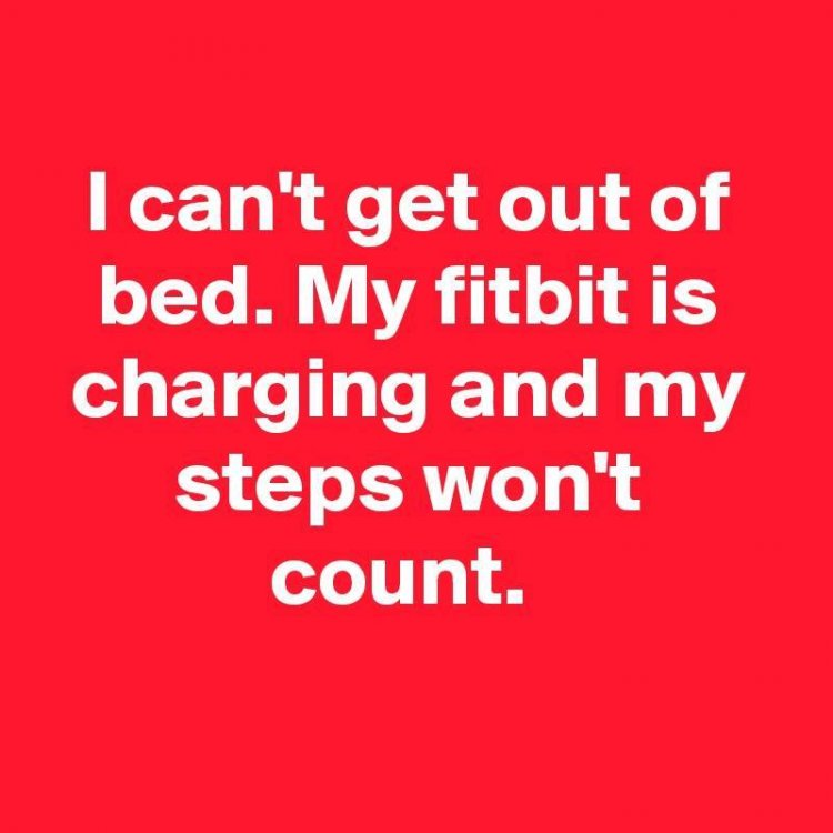 Image may contain: text that says 'I can't get out of bed. My fitbit is charging and my steps won't count.'